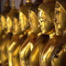 Gilded Buddhas (2)