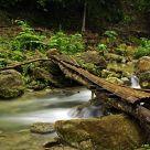 Sampalok River