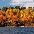 Pigeon Lake Fall Colours 2010