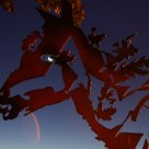 Cheval de lune, Horse Moon