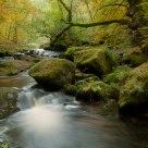 La Cascade des Jarrauds, 1