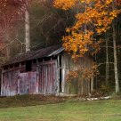 Barn in Autumn