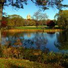 reflejos en el parque