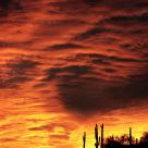Arizona Sunset On Fire