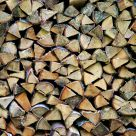 Wood pile
