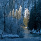 Creekside Winter.