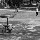 Victoria Park shadows