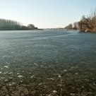 Frozen Danube