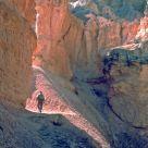 HIker on the Peek-a-boo Trail