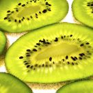 Kiwi Land