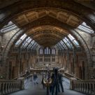 BBC Natural History Museum