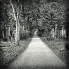 Alter Südfriedhof II