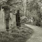Alter Südfriedhof V