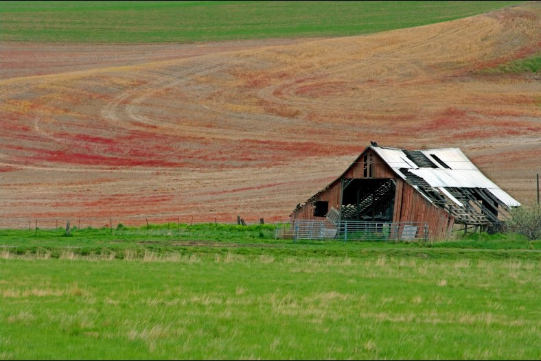 The Barn At The Painted Hills.