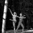 Wild ballet