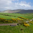 Green hills of Ireland