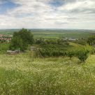 Őcsény Hill