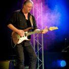 Guitarist II