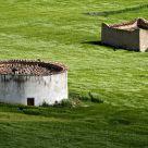 Two barns