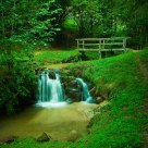 Green&Zen