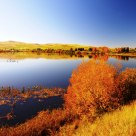 Fall in Tasmania