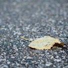 Principio de otoño