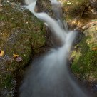 Water, moss and rock