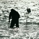 Fisherman in the Baltic Sea
