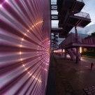light town neon