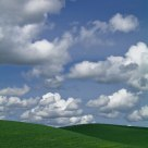 Palouse Day