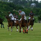 Polo at the Clifton Polo Ground: Kenya vs. Barbados 