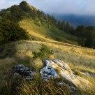 Near M. Borgognone (1400 m)