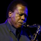 Wayne Shorter  at Vitoria Jazz Festival