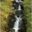 'Denali Falls Pano' - vertical pano