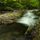Appalachian Stream