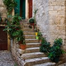 Steps and plants in Trogir