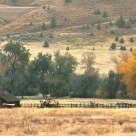 Central Oregon Ranch