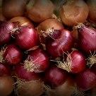 Onions & onions