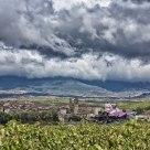 El Ciego, La Rioja, Spain