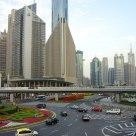 traffic blossom