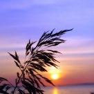 vous, le soleil et la mer.