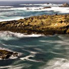 Impressions of Point Lobos