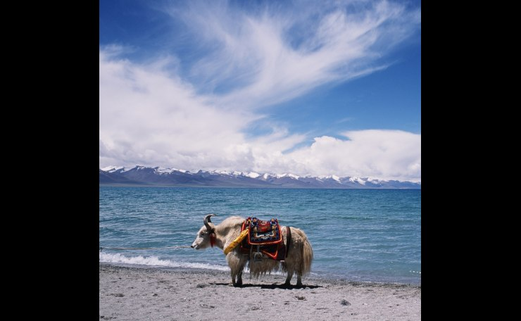 na mu cuo ( a lake in Tibet )