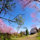 Khun Sathan Mountain Thailand