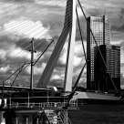 Rotterdam The swam bridge