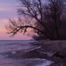 Lake Ontario Sunrise II