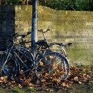 Bikes resting.