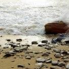 Pebble stone  of sea