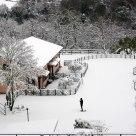 Incredible snowfall in Rome !
