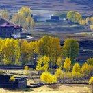 Beautiful village in autumn